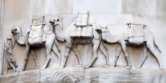 camel10